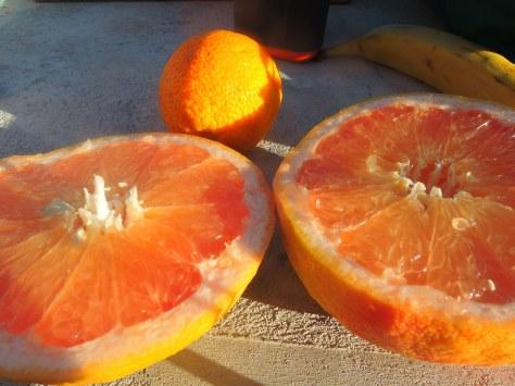 Very tasty fruit!