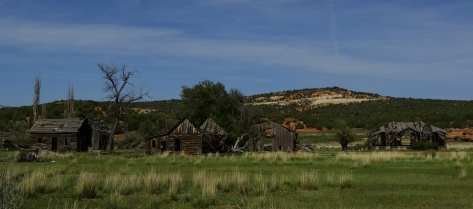 We saw this run-down homestead along the side of the road.