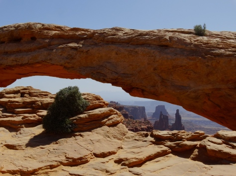 A short 1/2 mile walk takes you to this beautiful view at Mesa Arch.