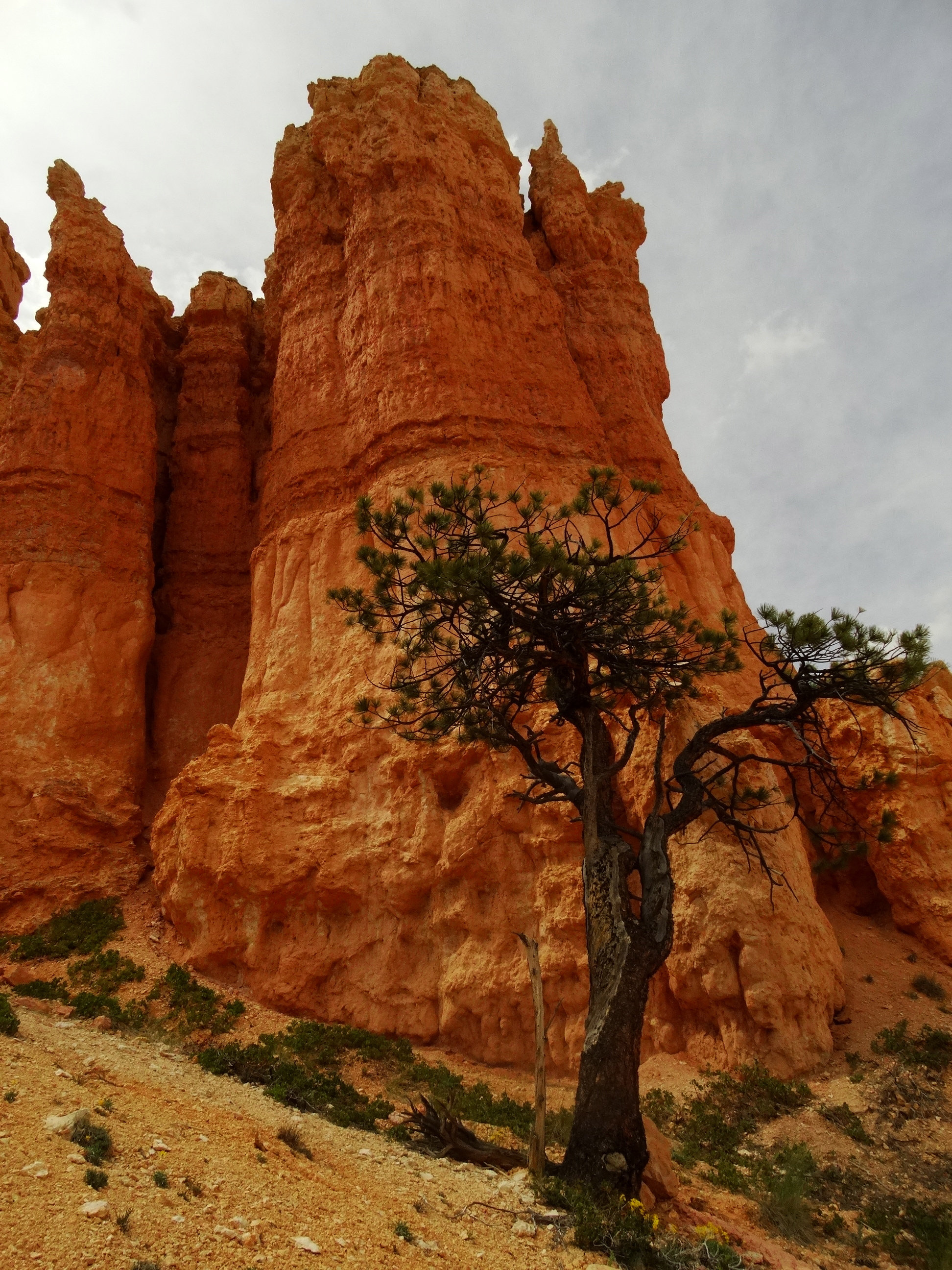 bryce canyon its the journey that matters. Black Bedroom Furniture Sets. Home Design Ideas