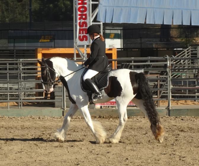 Western States Horse Expo – Sacramento