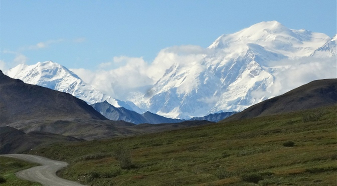 Our Denali Experience